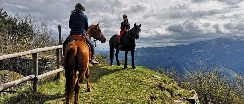 Il cavallo e la montagna